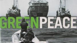 Greenpeace Wallpaper HD
