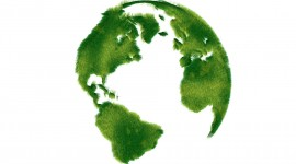 Greenpeace Wallpaper HQ