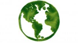Greenpeace Wallpaper High Definition