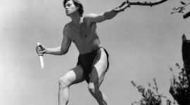 Johnny Weissmuller Wallpaper For Mobile#1