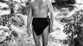 Johnny Weissmuller Wallpaper For Mobile#3