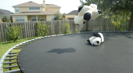Jumping On The Trampoline Wallpaper Download Free