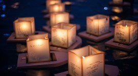 Paper Lanterns Wallpaper