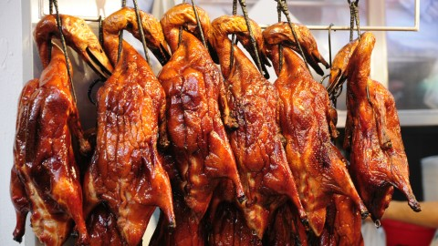 Peking Duck wallpapers high quality