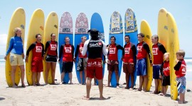 School Of Surfing Wallpaper Download