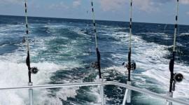 Sea Fishing Best Wallpaper