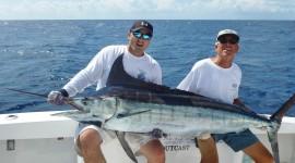 Sea Fishing High Quality Wallpaper