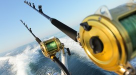 Sea Fishing Wallpaper For PC