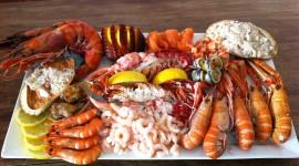 Seafood Best Wallpaper