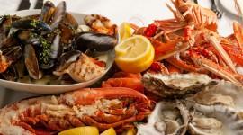 Seafood Desktop Wallpaper For PC