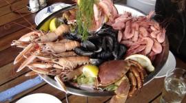Seafood Wallpaper Download Free