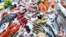 Seafood Wallpaper Free