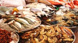 Seafood Wallpaper HQ