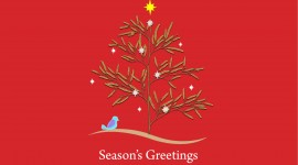 Seasons Greetings Aircraft Picture