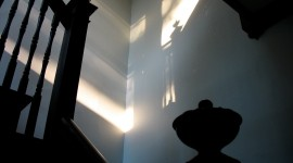 Shadows On The Wall Photo Download