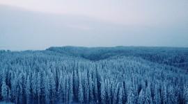 Siberia Wallpaper High Definition