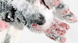 Snow Macro Wallpaper Free