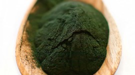 Spirulina Wallpaper For IPhone Download