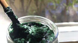 Spirulina Wallpaper Free