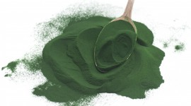 Spirulina Wallpaper High Definition