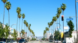 Streets Of Los Angeles Wallpaper Download