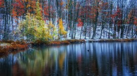 The First Snow Photo Download