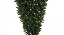 Unusual Christmas Trees For Android#1