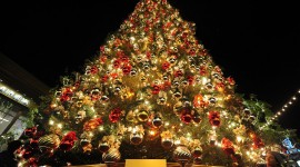 Unusual Christmas Trees Wallpaper Free