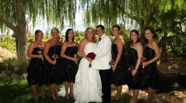 Wedding In Vegas Wallpaper 1080p