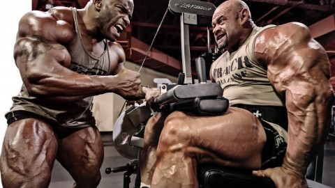 4K Bodybuilder wallpapers high quality