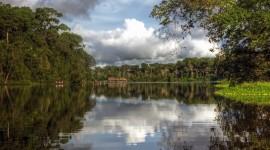 Amazon River Desktop Wallpaper