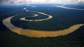 Amazon River Desktop Wallpaper For PC