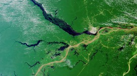 Amazon River Wallpaper