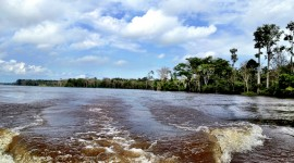 Amazon River Wallpaper Download