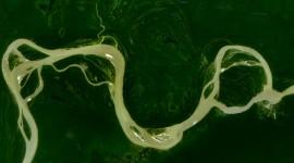 Amazon River Wallpaper Free