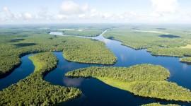 Amazon River Wallpaper Full HD
