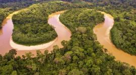 Amazon River Wallpaper Gallery