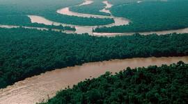 Amazon River Wallpaper HD