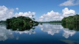 Amazon River Wallpaper HQ