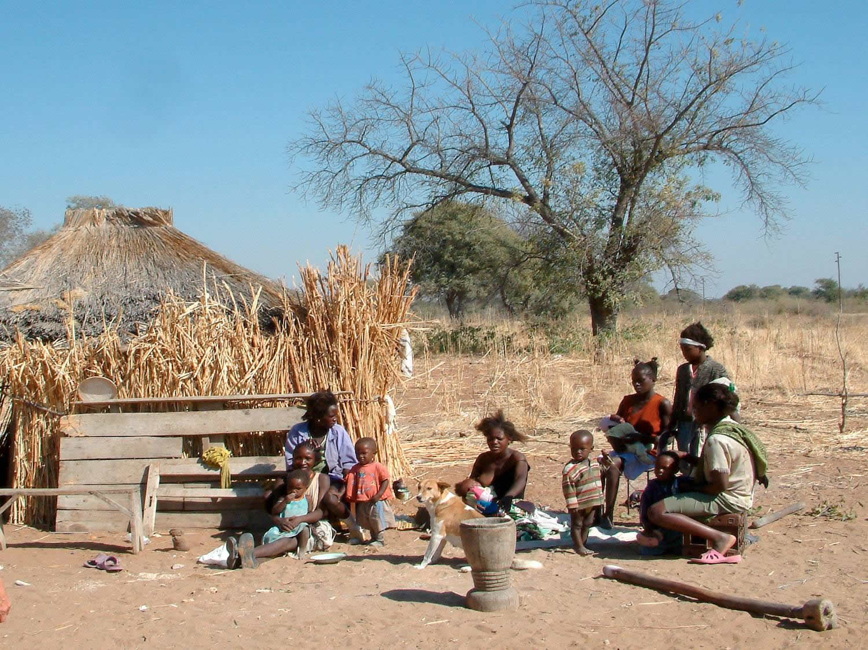 a comparison of botswana and zimbabwe Botswana-zimbabwe: do new fences make good mozambique and zimbabwe, botswana's new fence will be an obstacle to the free movement and reproduction of.