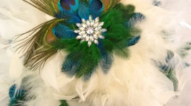 Bouquet Feather Best Wallpaper