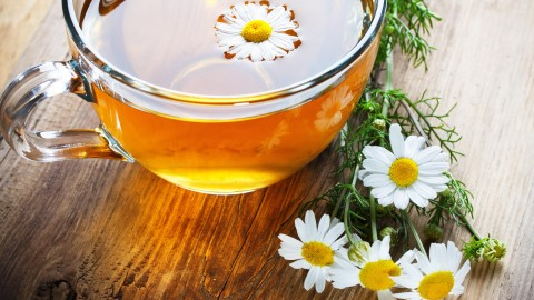 Chamomile Tea wallpapers high quality