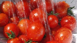 Cherry Tomatoes Photo Free