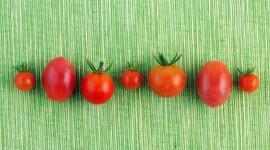 Cherry Tomatoes Wallpaper 1080p