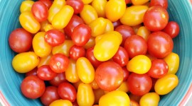 Cherry Tomatoes Wallpaper For Desktop