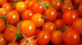 Cherry Tomatoes Wallpaper Full HD