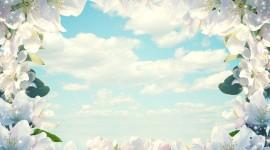 Cloud Frame Desktop Wallpaper For PC
