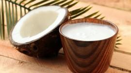 Coconut Milk Best Wallpaper