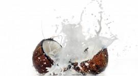 Coconut Milk Wallpaper Download Free
