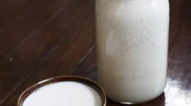 Coconut Milk Wallpaper For IPhone Download